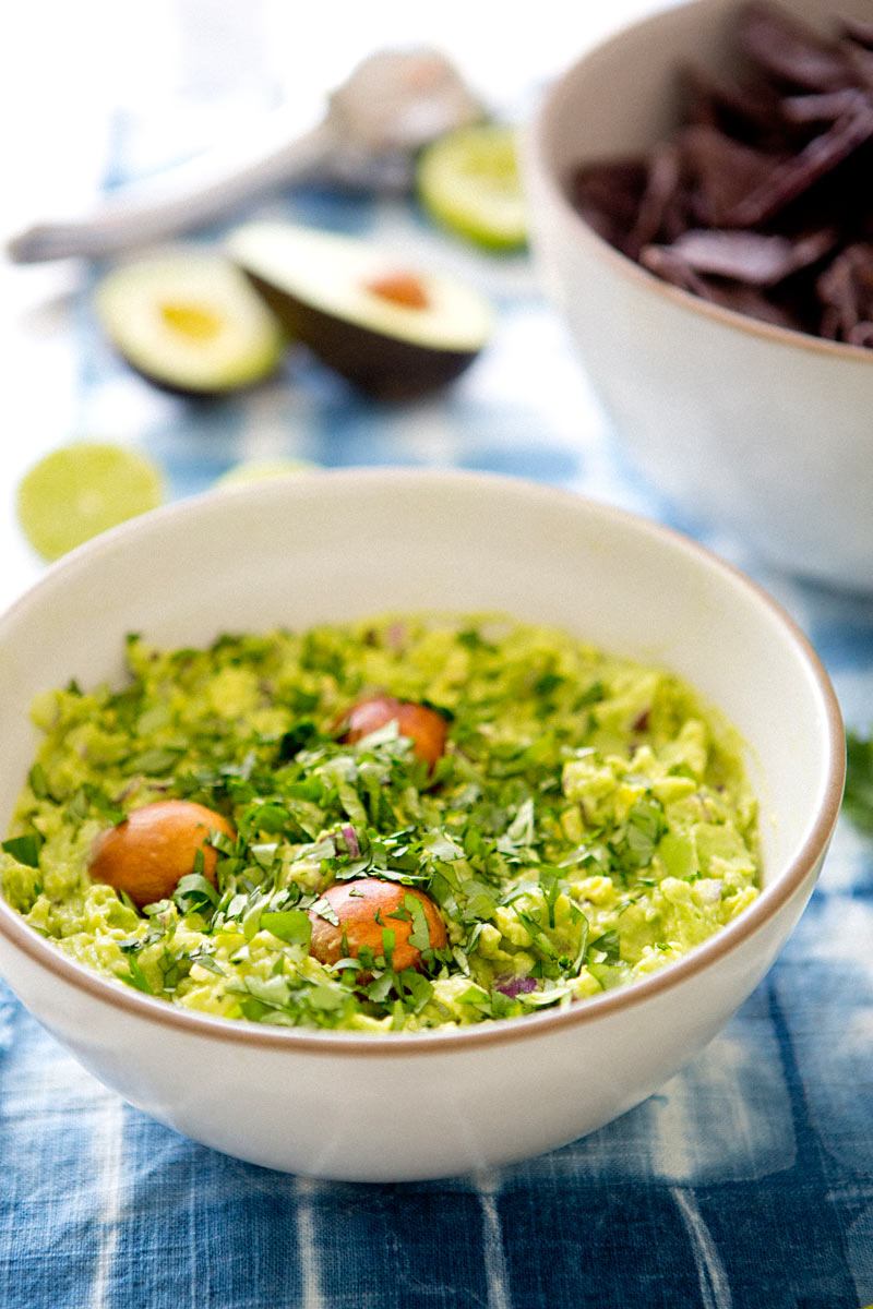 Guacamole_recipe_A_House_in_the_Hills04