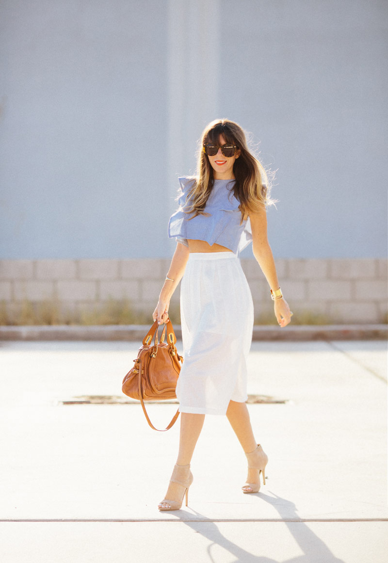 rebecca_minkoff_skirt__a_house_in_the_hills-5